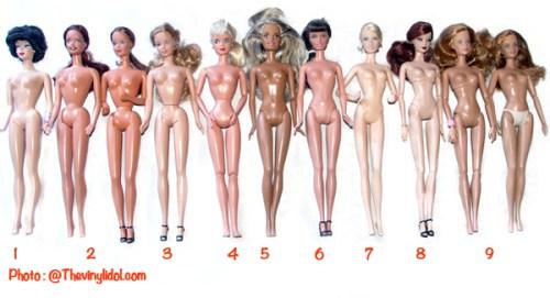 différents corps, bodies